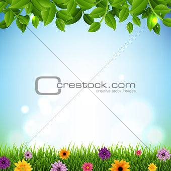 Green Sprout Set Transparent Background