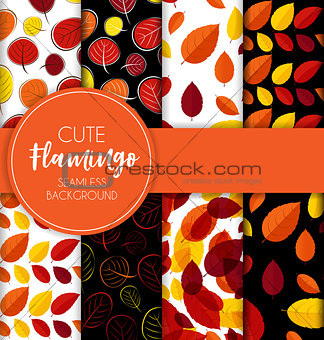 Autumn Leaves Seamless Pattern Collection Set  Background Vector Illustration