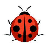 Cute Ladybug Icon. Vector Illustration