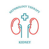 Kidney simple icon - nephrology department