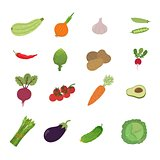 illustration set vegetable