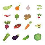 illustration set vegetable