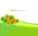 Beautiful vector flowers