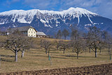 Landscape with Farmhouse and Meadow with trees, Gorenjska - Slovenia