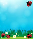 Spring background with ladybugs 3