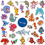 cartoon sea life animal characters collection
