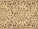 Dry soil cracked texture