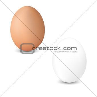 2 Fresh Egg Isolated White Background