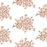 Cherry blossom seamless vector pattern.