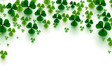 Green clover leaves on white background. Fall of shamrock symbol of Patrick's Day