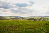 Spring Ukrainian fields