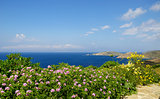 Andros island during the sprig time