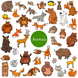 cartoon wild animal characters big set