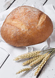 Freshly baked  bread with  kitchen towel and wheat