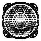 stylish vector monochrome detailed illustration with speaker