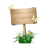 Summer wooden sign in green grass
