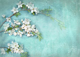 Postcard floral template.