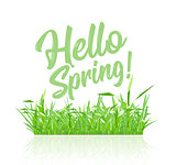 Text message hello spring, on a background of spring grass on a white background