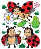 Happy ladybugs theme set 1