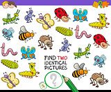 find two identical bug pictures game for kids