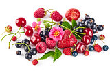 Berry mix with strawberry raspberry and currant