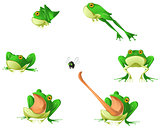 Frog Cartoon Design Element Set