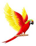 Budgerigar parrot Ara waving wings
