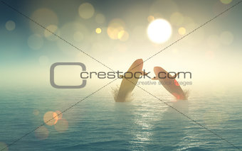 3D whales jumping out of the sea