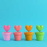 Colorfull hearts in the pots on red box on bright blue backgroun