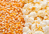 Raw golden sweet corn and popcorn seeds half plate