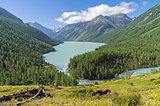 Kucherla lake. Altai Mountains, Russia.