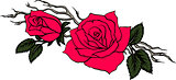 graceful branch with two red roses in vector