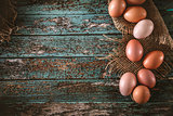 Eggs  on wood