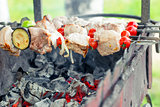 appetizing tasty shish kebab on skewers on grill over coals