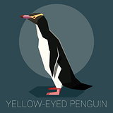 Flat Yellow-eyed penguin