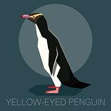 Flat Yellow-eyed penguin