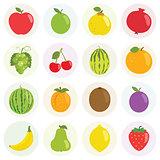 Fruits Vector Illustration Set