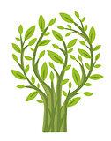 Green Tree (vector)