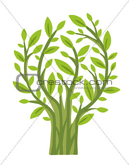 Green Tree (vector)