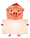 Funny pig in santa hat holding empty blank banner