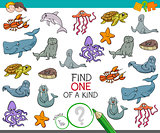 find one of a kind game with marine animals