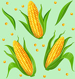 Corn cobs seamless pattern