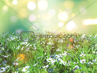 3D landscape of daisies in grass