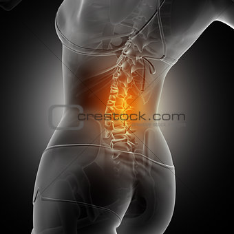 3D medical background of a female figure with spine highlighted