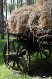 Straw bales on a cart