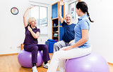 Elderly couple at physiotherapy on gymnastic balls