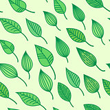 Green seamless pattens with leaves, vector summer and spring background, greenery wallpaper