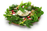 sabzi khordan, assortment of fresh herbs and raw vegetables salad,