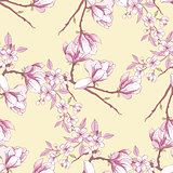 Seamless pattern with magnolia