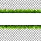 Ripped Paper With Grass And Transparent Background
